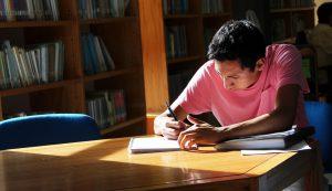 Alumno biblioteca
