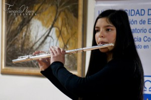 Flauta traversa 2
